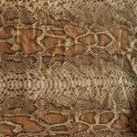 laminated snake